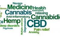 Cannabis Careers